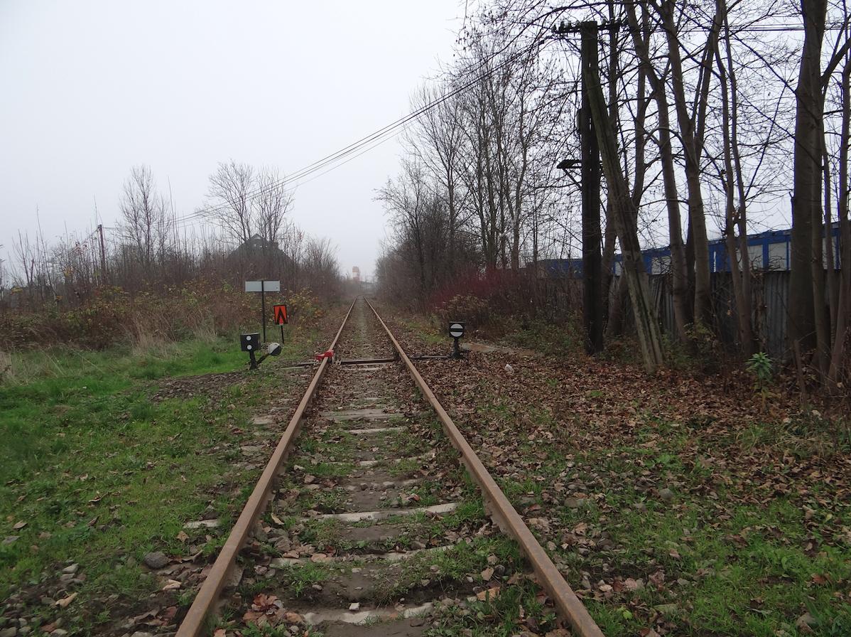Tor kolejowy w kierunku Krakowa. 2014 rok. Zdjęcie Karol Placha Hetman