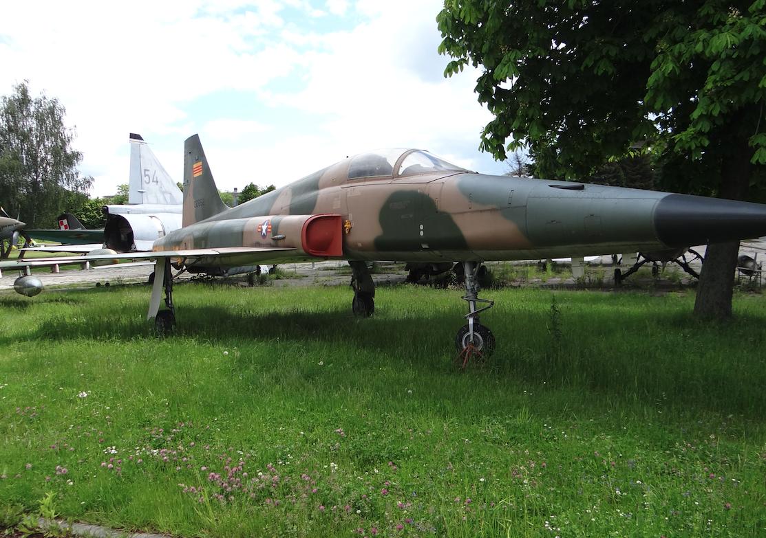 F-5 E nr 73-00852. Rok 2020. Zdjęcie Karol Placha Hetman