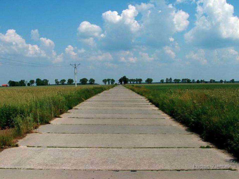 Droga dojazdowa od miejscowości Różyniec na Lotnisko. Widok w kierunku północnym. 2007 rok. www.fortyfikacje.legnica
