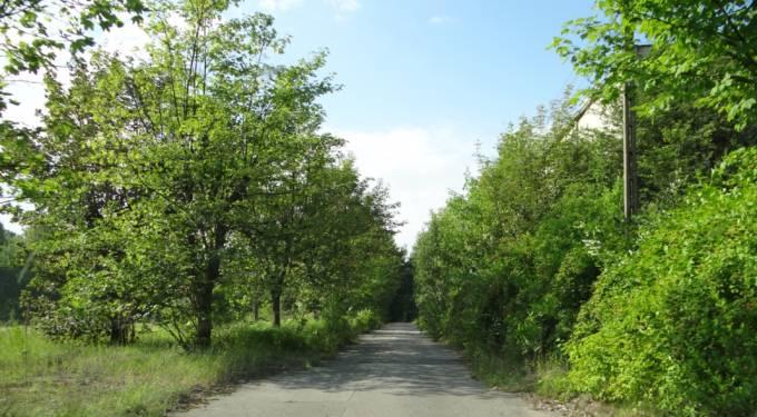 Jedna z głównych dróg na terenie Lotniska. 2012r.