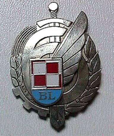 6 Baza Lotnicza. Odznaka pamiątkowa.